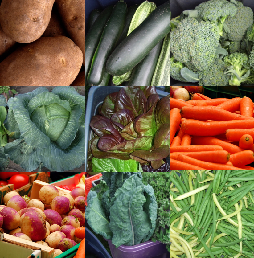 Thumbnails of various crops that grow well in Alaska, including: Potato, zucchini, carrots, broccoli, beans, cabbage etc.es,