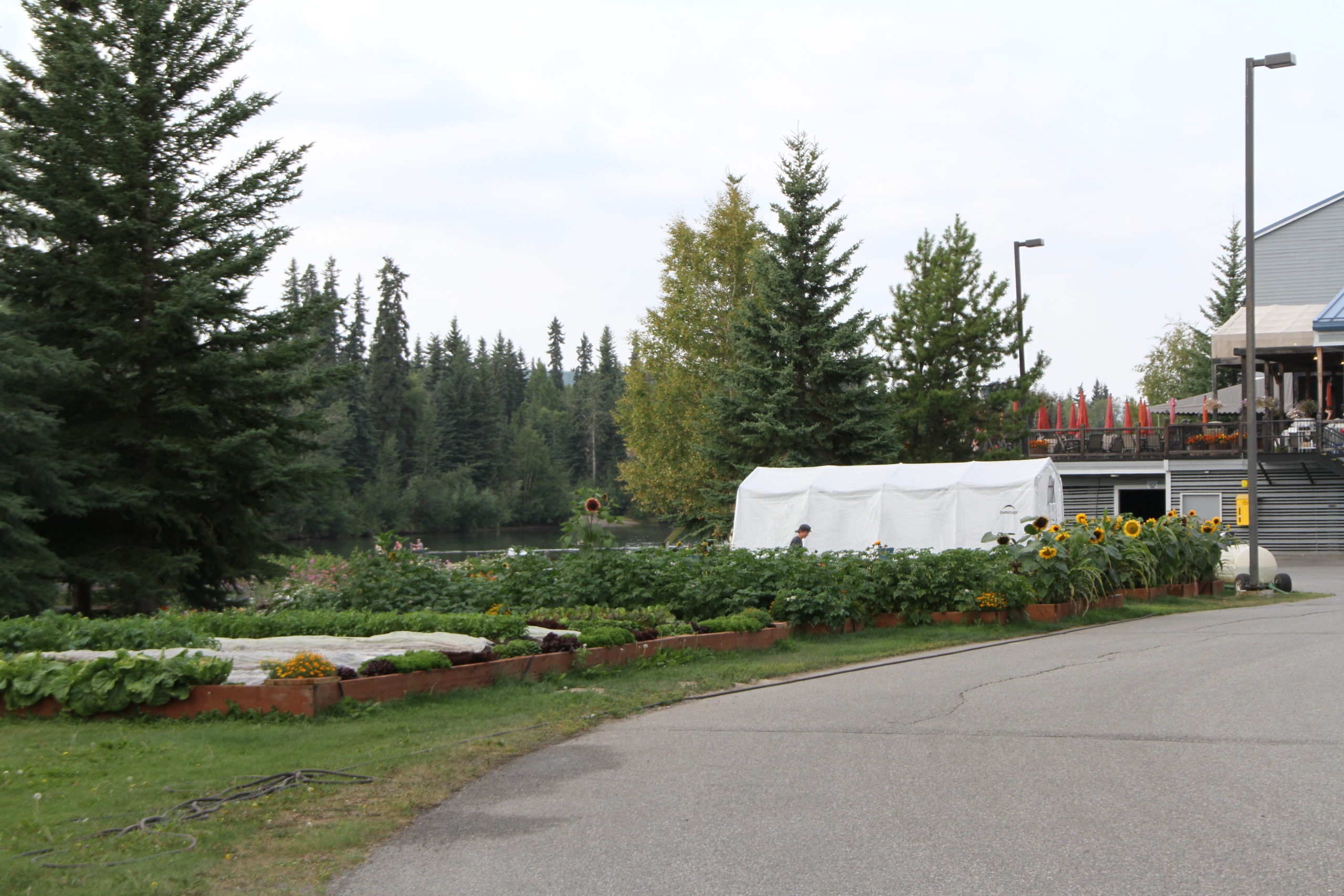 A view of the gardens adjacent to the outdoor dining deck at the Fairbanks Princess Lodge.