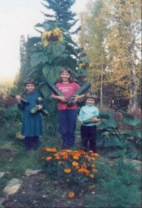 Heidi and her two sisters holding large zucchini squash in their childhood garden with large sunflowers in the background.