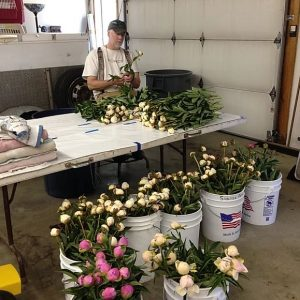 man sitting with buckets and piles of peonies on table