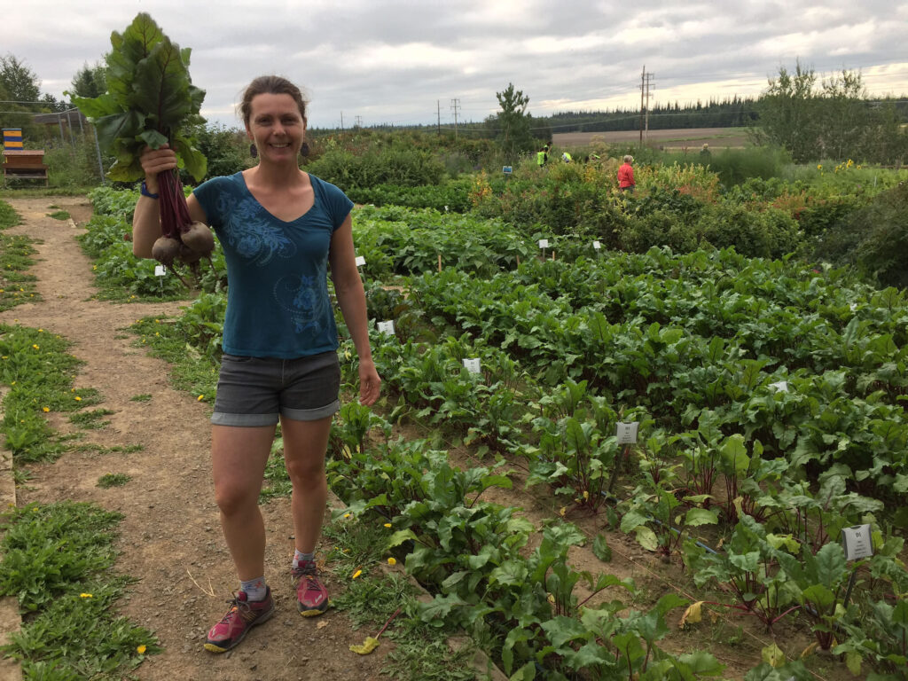 Heidi Rader shows off beets from the variety trials in Fairbanks. Photo by Glenna Gannon