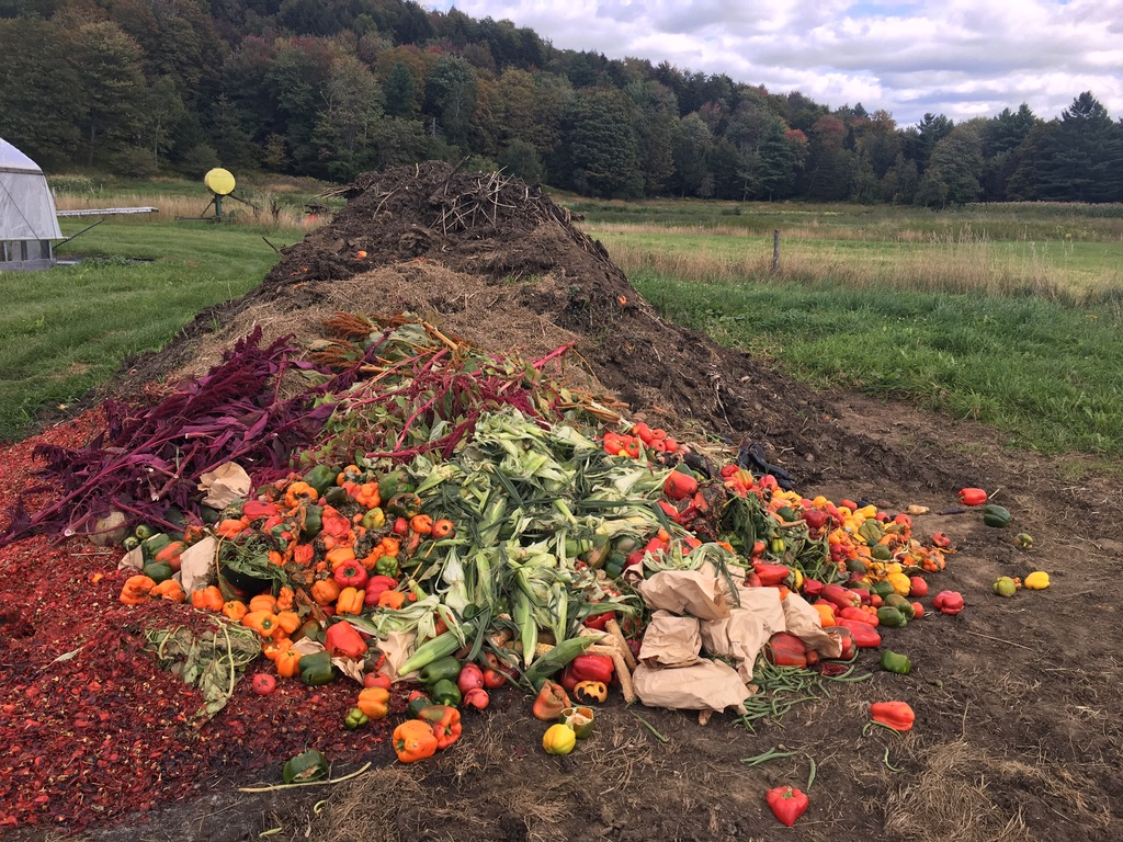 a large compost pile with peppers and amaranth and paper bags