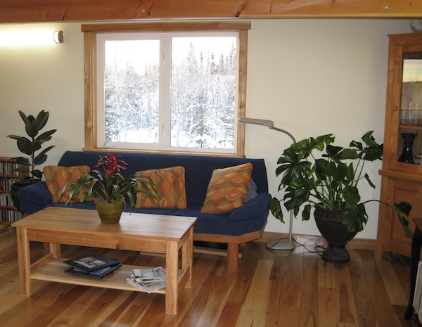a couch, table, and three houseplants pictured in a cabin.