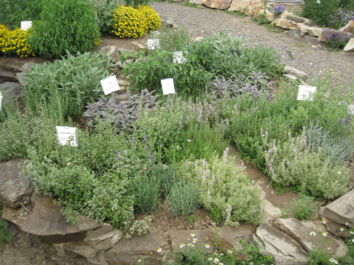 a variety of herbs planted, bordered by rocks.