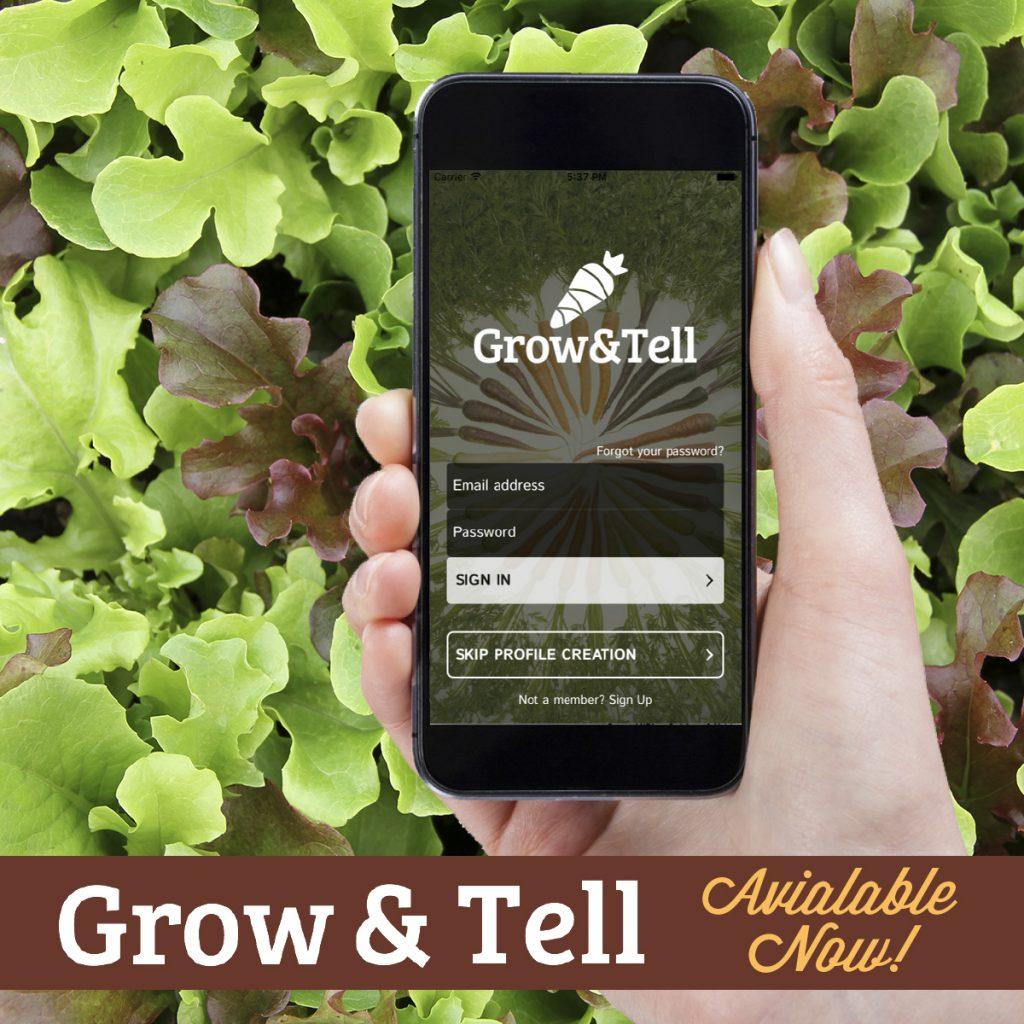 grow and tell logo with iPhone, with a background of lettuce.